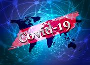 COVID-19-SMALL