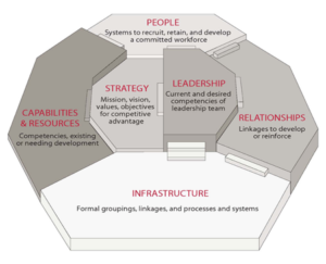 Queen's IRC Blueprint for Organizational Effectiveness